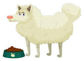 Söt hund med vit päls
