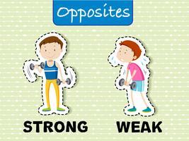 Gegensätzliche Wörter für stark und schwach vektor
