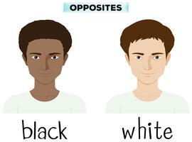 Motsatt adjektiv för svart och vitt