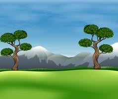 Vacker utsikt över det gröna fältet vektor