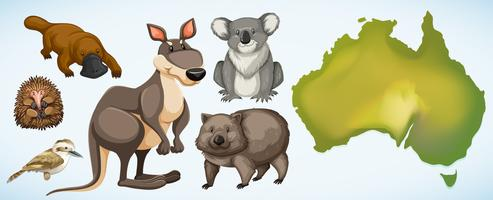 Olika vilda djur i Australien