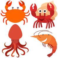 Vier Arten von Meerestieren