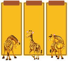 Olika post av giraff på banderoll