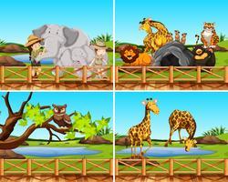 Set Szenen von Tieren vektor