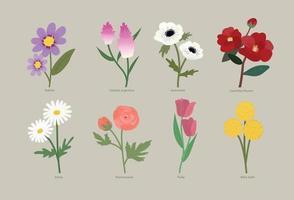Arten von Blumen vektor