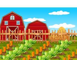 Ett lantgårdens lantlandskap