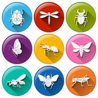 Insekten-Symbole vektor