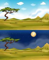 Grönt fält på dagtid och natt