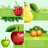 Infografisk design med färska frukter