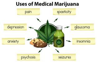 Die Verwendung von medizinischem Marihuana vektor