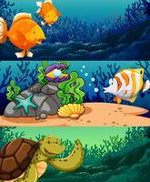 Havsdjur under havet vektor