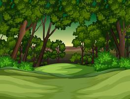 Ein tropischer Regenwaldhintergrund vektor