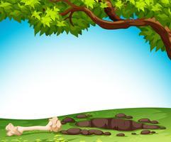 Boden und Knochen in der Natur vektor