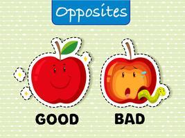 Motsatta ord för bra och dåliga vektor