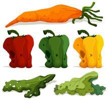 Verschiedene Arten von faulem Gemüse vektor
