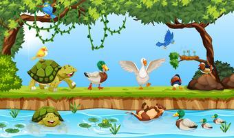 Tiere in einer Teichszene