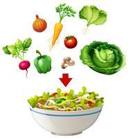 Vielzahl von Salat in eine Schüssel geben vektor