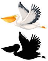 Aet av pelikan karaktär vektor