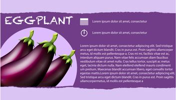 Färska äggplantor och textdesign vektor