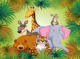 Vilt djur i grön djungelbakgrund