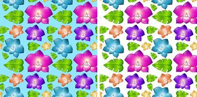 Två sömlösa bakgrunder med färgglada blommor vektor
