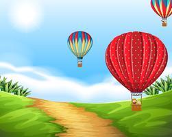 Varmluftsballong i naturlandskap