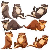 Süße Otter in verschiedenen Aktionen vektor