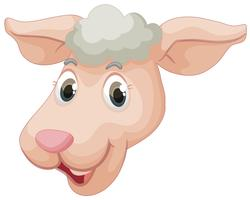 Ein Gesicht von Schafen vektor