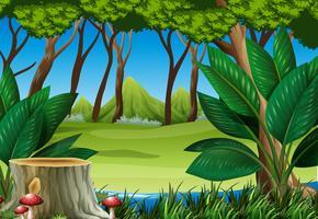 Waldszene mit Baumstumpf und Bergen