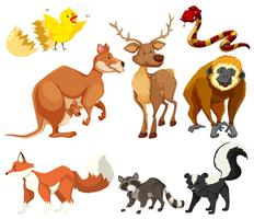Olika typer av djur vektor