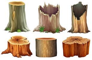 Verschiedene Baumstümpfe vektor
