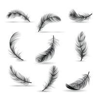 realistische Feder schwarz Icon Set Vektor-Illustration vektor