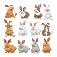 Kaniner med olika pälsfärger