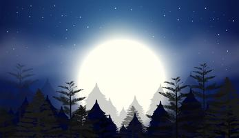 vacker nattsky scen vektor