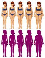 Ein Satz Frauenkörper-Schattenbild vektor