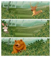 Wilde Tiere im Wald zur Tageszeit