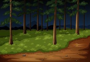 Skogsplats med träd och spår på natten