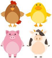 Vier verschiedene Arten von Nutztieren