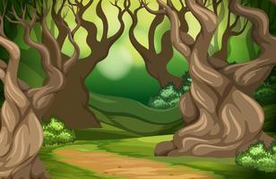 En tropisk regnskogsbakgrund