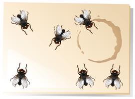Många flugor på vattenfläcken