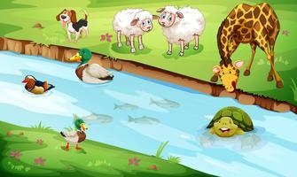 Många djurliv som lever vid floden vektor