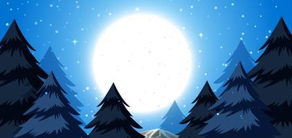 Ein Winternachthintergrund