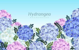 blühender Hortensienhintergrund vektor