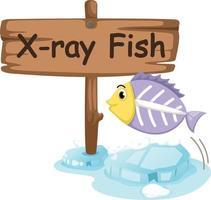 Tieralphabetbuchstabe x für Röntgenfisch vektor