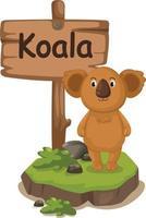 Tieralphabetbuchstabe k für koala vektor