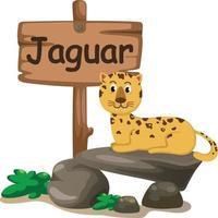 Tieralphabetbuchstabe j für Jaguar vektor