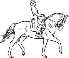 junger Reiter Mann auf Pferd beim Dressurwettbewerb vektor
