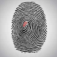 Fingerabdruckabbildung, Vektor