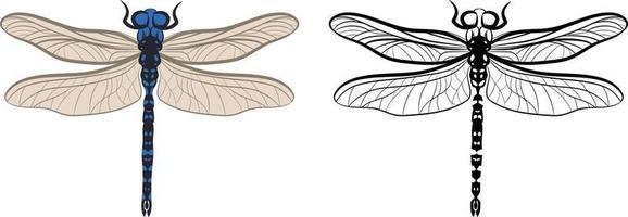 Libelle oder Anisoptera-Vektorillustration vektor
