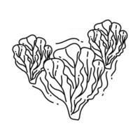 Symbol für den Anbau von Salat. handgezeichnete Icon-Set, Umriss schwarz, vektor